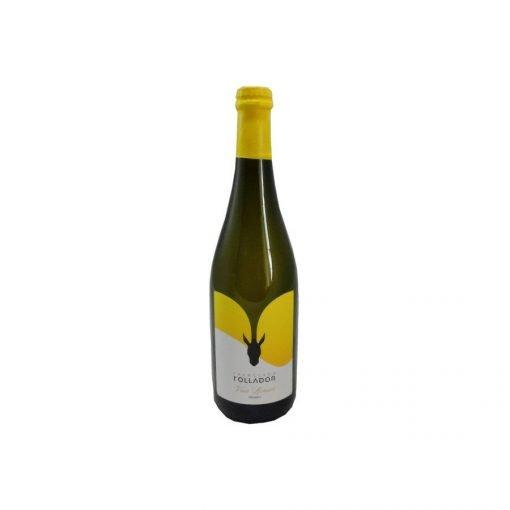 bottiglia follador vino frizzante