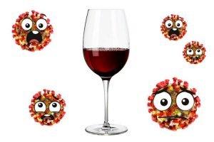 immagine bicchiere di viino